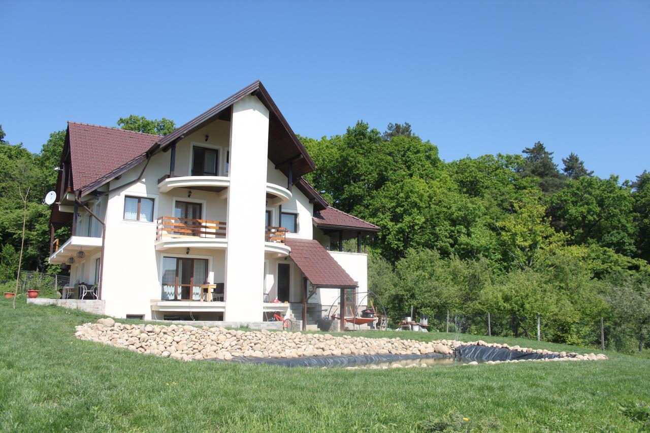 Forest Villa - Cisnădioara, Sibiu